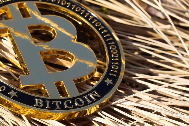 libri sulle criptovalute e bitcoin